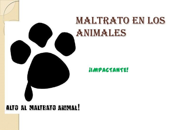 MALTRATO EN LOS ANIMALES <br />¡IMPACTANTE!<br />