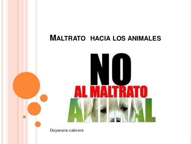 MALTRATO HACIA LOS ANIMALES Dayanara cabrera