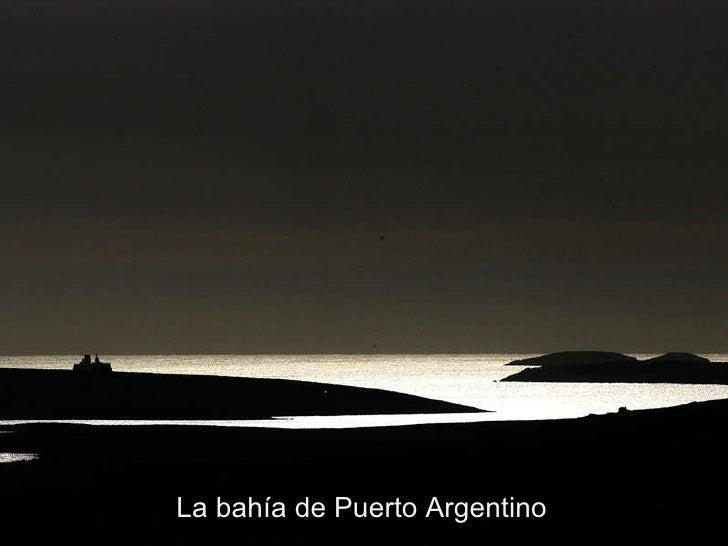 La bahía de Puerto Argentino
