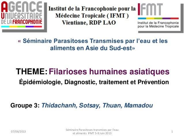 « Séminaire Parasitoses Transmises par l'eau et lesaliments en Asie du Sud-est»THEME: Filarioses humaines asiatiquesÉpidém...