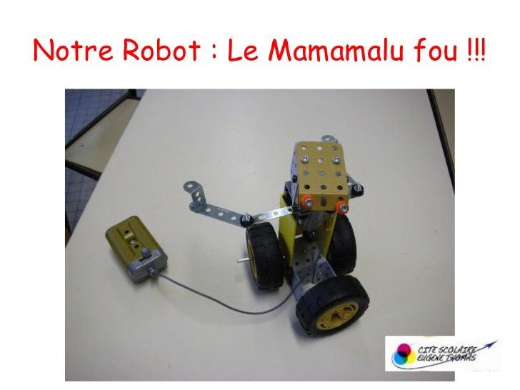 Notre Robot : Le Mamamalu fou !!!