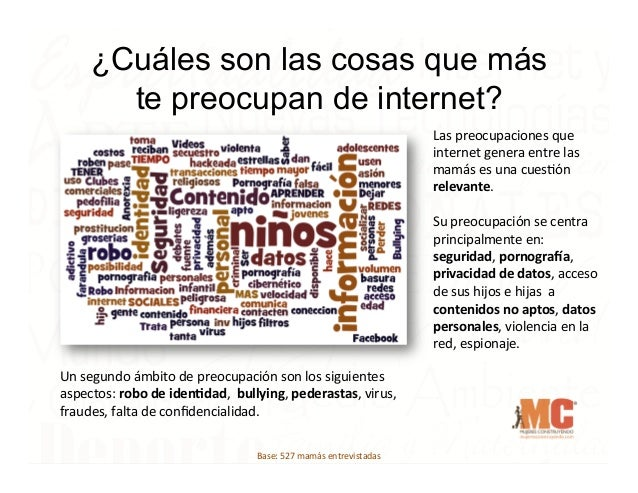 ¿Cuáles son las cosas que más te preocupan de internet? Las  preocupaciones  que   internet  genera  entre  la...