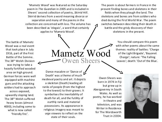 mametz wood analysis essay