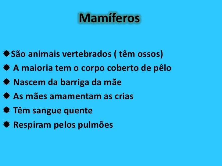 MamíferosSão animais vertebrados ( têm ossos) A maioria tem o corpo coberto de pêlo Nascem da barriga da mãe As mães a...