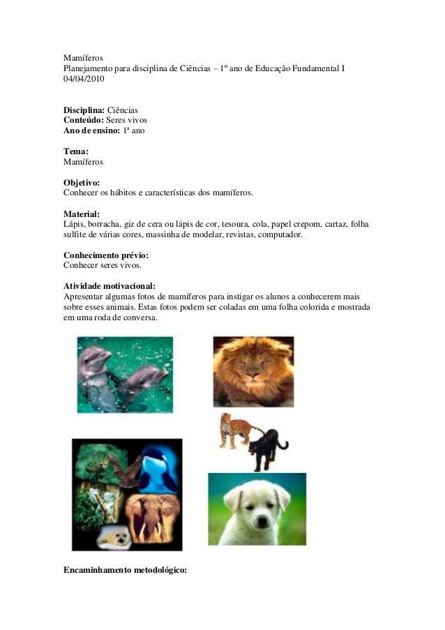 MamíferosPlanejamento para disciplina de Ciências – 1º ano de Educação Fundamental I04/04/2010Disciplina: CiênciasConteúdo...