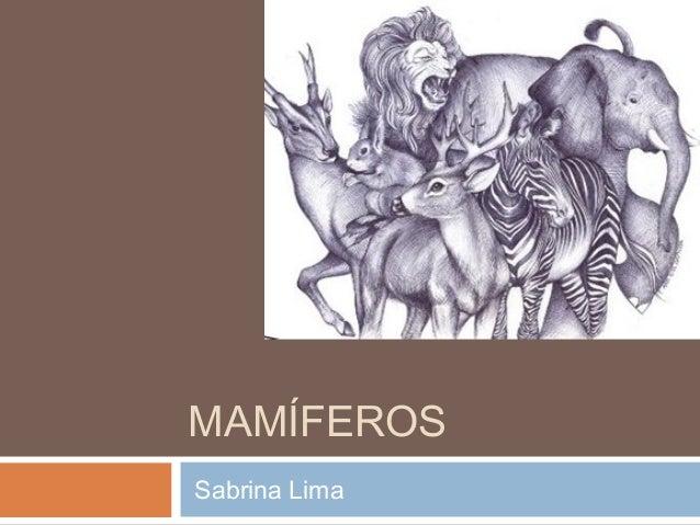 MAMÍFEROS  Sabrina Lima