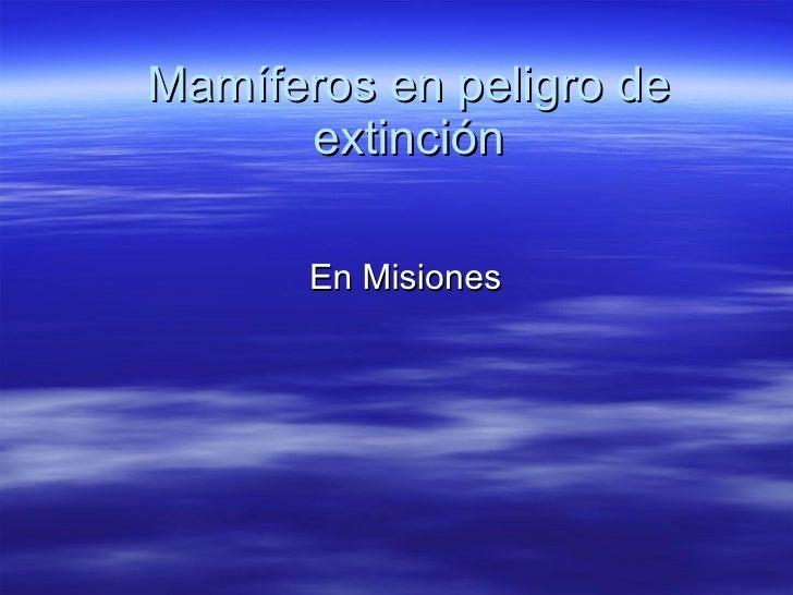 Mamíferos en peligro de extinción En Misiones