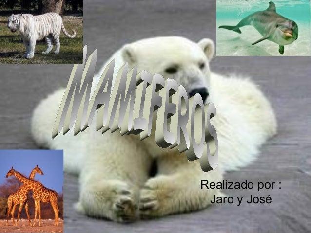 Realizado por : Jaro y José