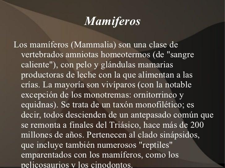 """Mamiferos <ul><li>Los mamíferos (Mammalia) son una clase de vertebrados amniotas homeotermos (de """"sangre caliente&quo..."""
