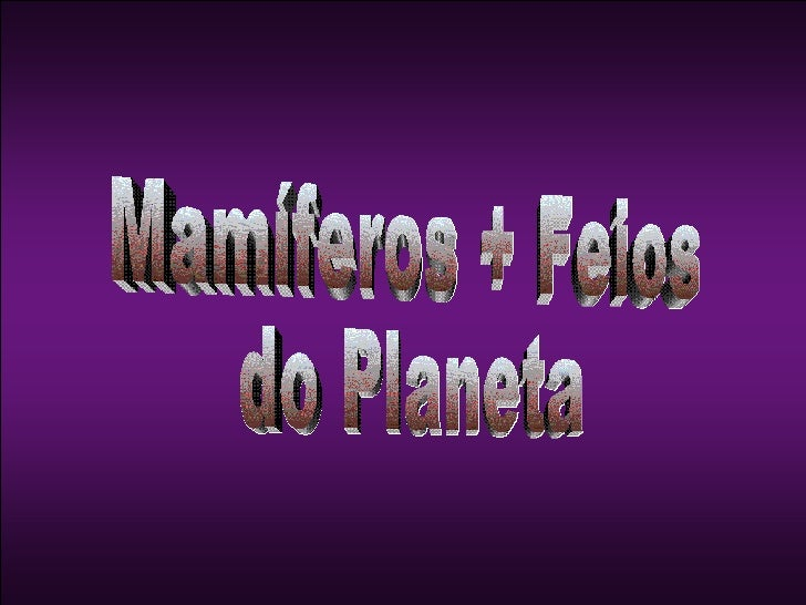 Mamíferos + Feios  do Planeta