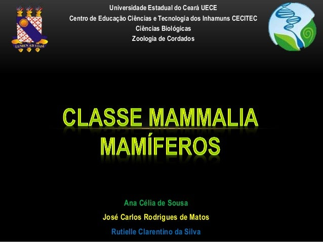 Universidade Estadual do Ceará UECECentro de Educação Ciências e Tecnologia dos Inhamuns CECITEC                      Ciên...