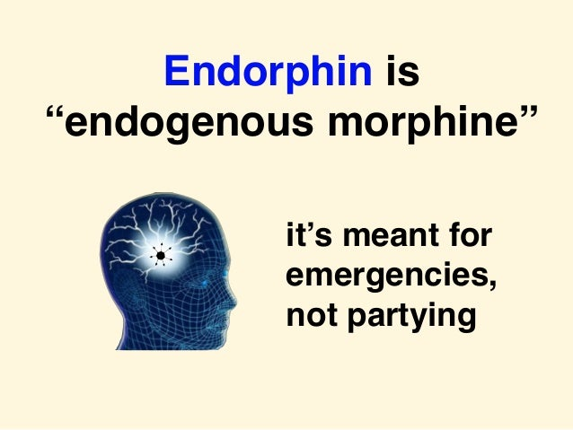 """Endorphin is """"endogenous morphine"""" it's meant for emergencies, not partying"""