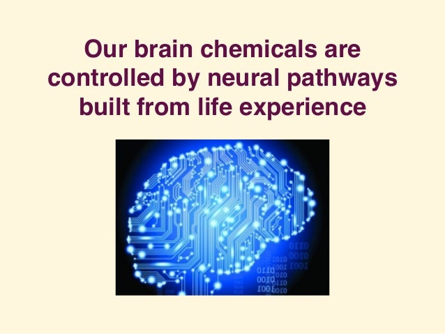 Our brain chemicals are controlled by neural pathways built from life experience