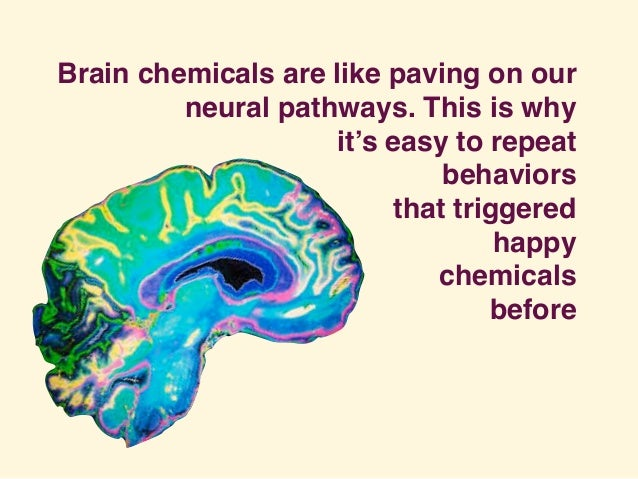 Brain chemicals are like paving on our neural pathways. This is why it's easy to repeat behaviors that triggered happy che...