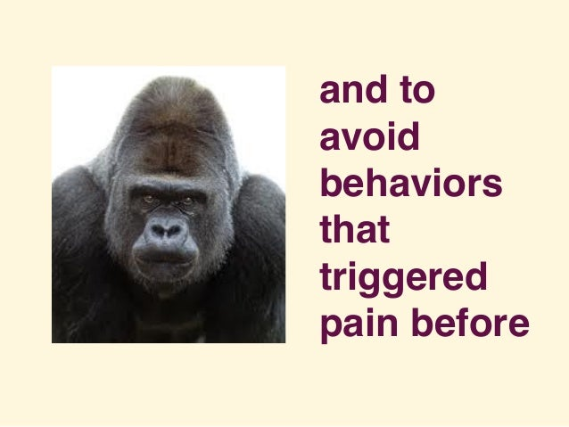 and to avoid behaviors that triggered pain before