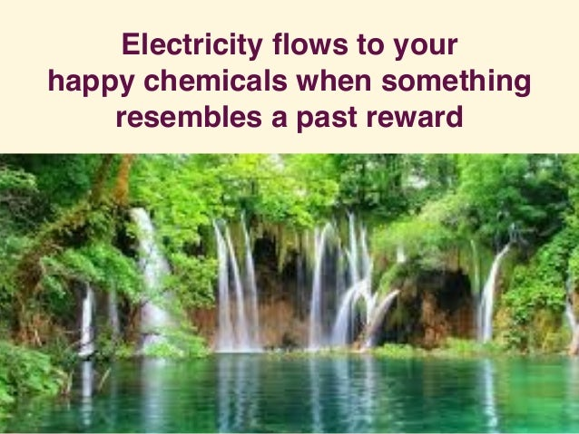 Electricity flows to your happy chemicals when something resembles a past reward