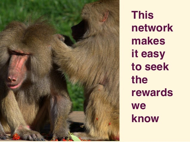 This network makes it easy to seek the rewards we know
