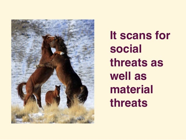 It scans for social threats as well as material threats