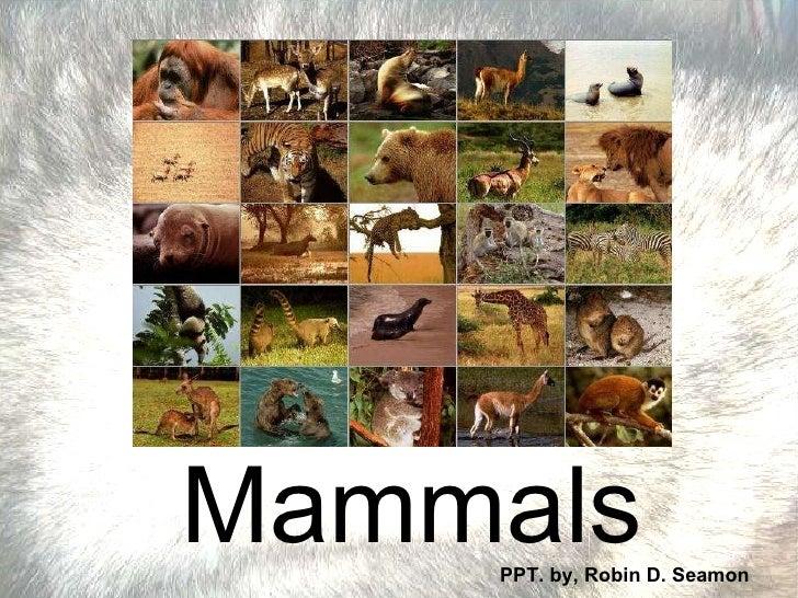 Mammals PPT. by, Robin D. Seamon