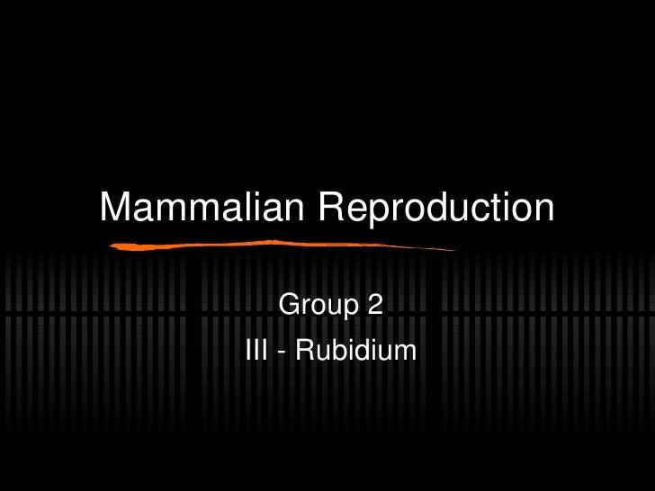 Mammalian Reproduction Group 2 III - Rubidium