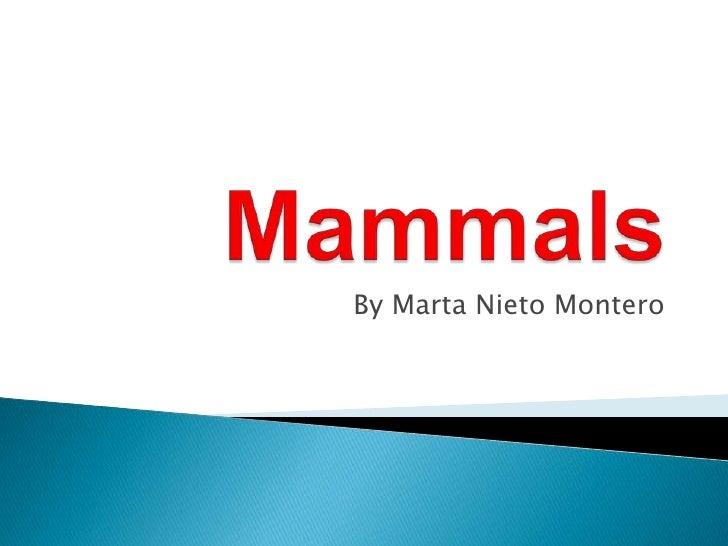 Mammals<br />By Marta Nieto Montero<br />