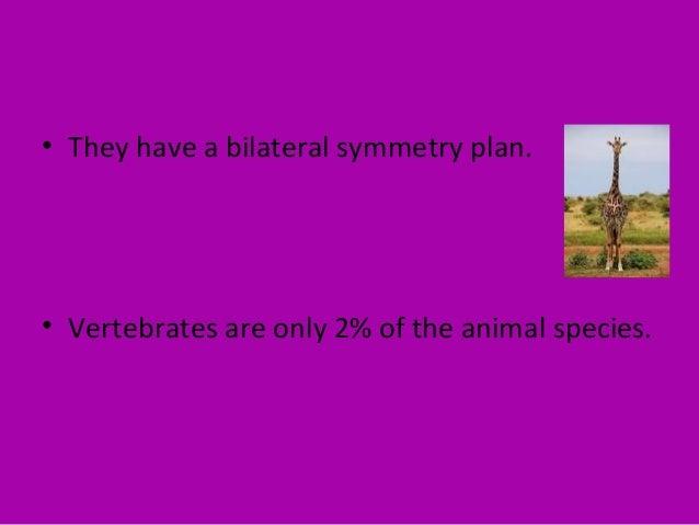 • Vertebrates are heterotrophic. • Humans are vertebrates.