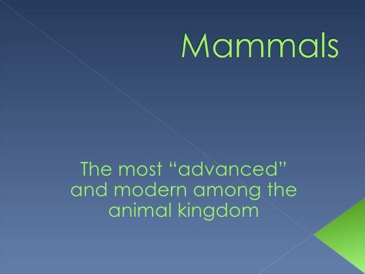 "The most ""advanced"" and modern among the animal kingdom"