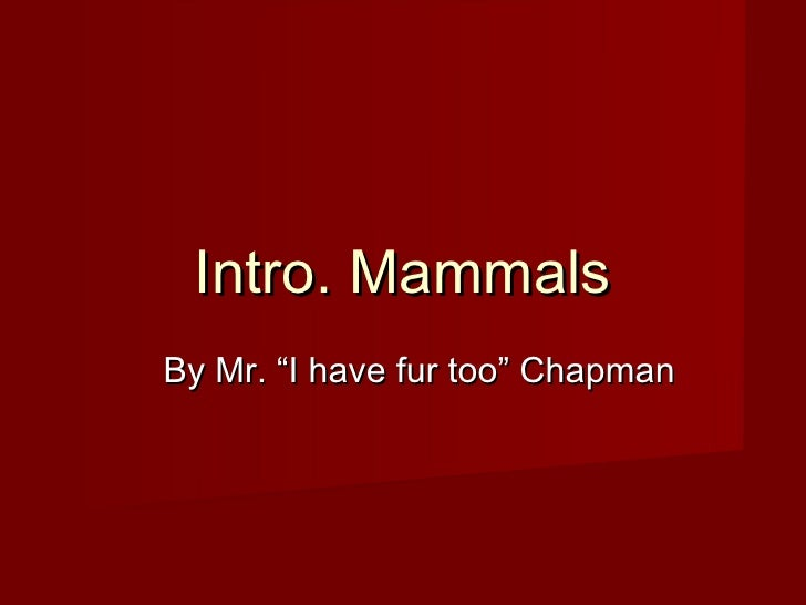 "Intro. MammalsBy Mr. ""I have fur too"" Chapman"