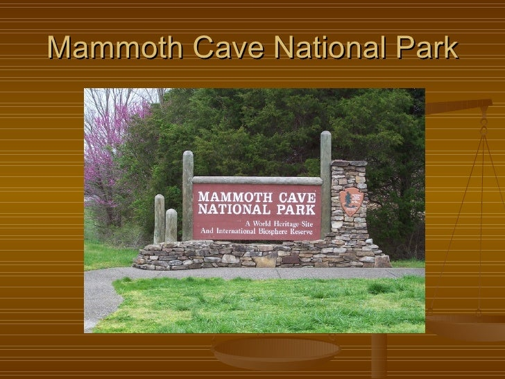 Mammoth Cave National Park