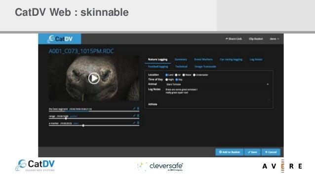 CatDV Web : skinnable