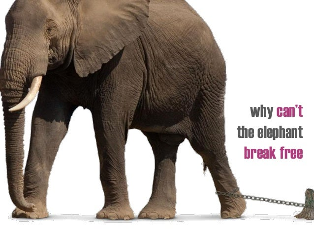 why can't the elephant break free