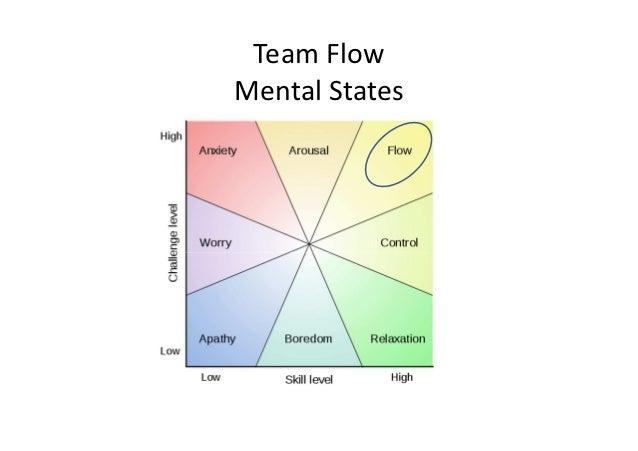 Team FlowMental States