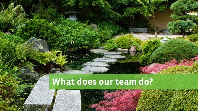 What does our team do?