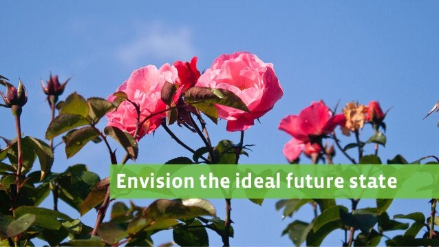 Envision the ideal future state