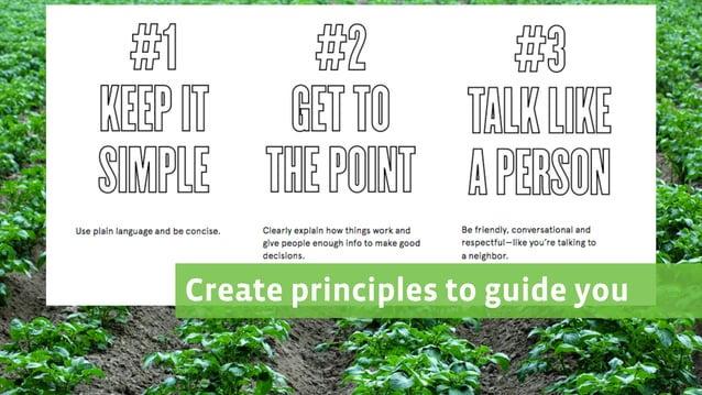 Create principles to guide you