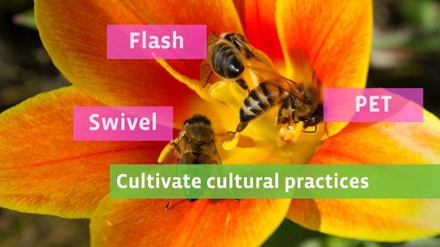 Cultivate cultural practices Swivel Flash PET