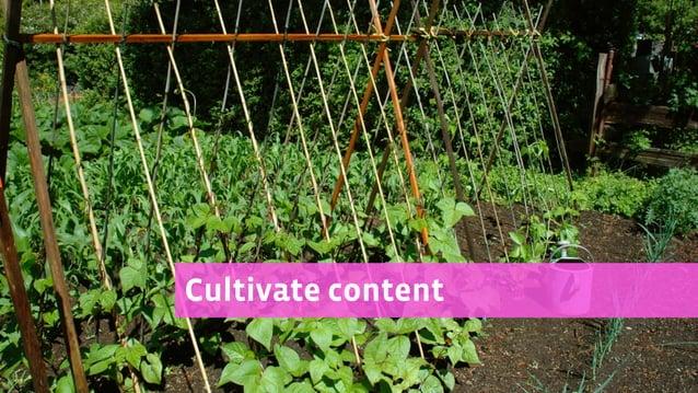 Cultivate content