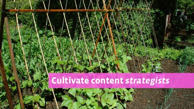 Cultivate contentCultivate content strategists