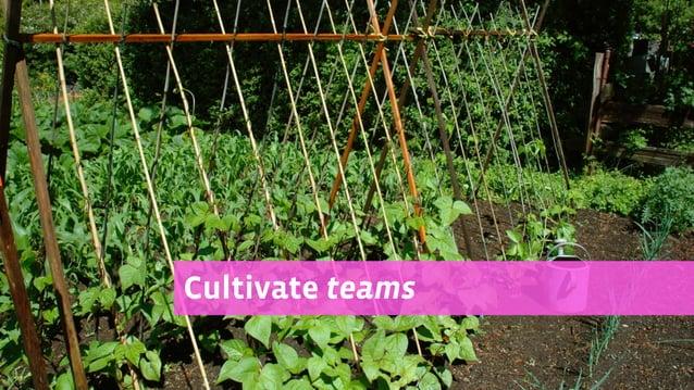 Cultivate teams