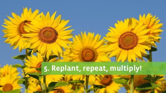 3. Know who will grow 2. Love the mud 1. Plan before you plant