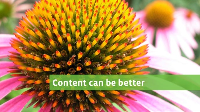 Managing with a Green Thumb: Tools and Practices for Growing a Content Strategy Team Slide 3
