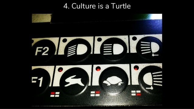 4. Culture is a Turtle