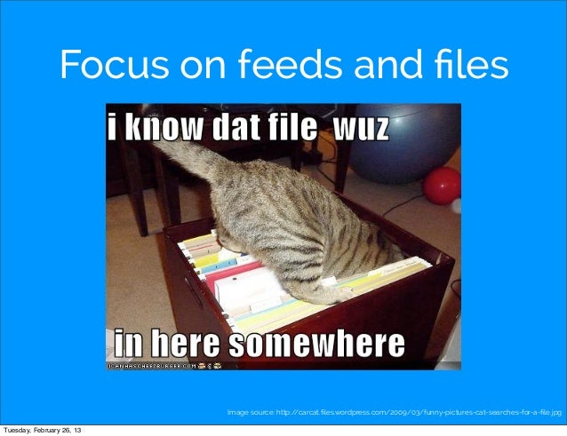 Focus on feeds and files                           Image source: http://carcat.files.wordpress.com/2009/03/funny-pictures-ca...