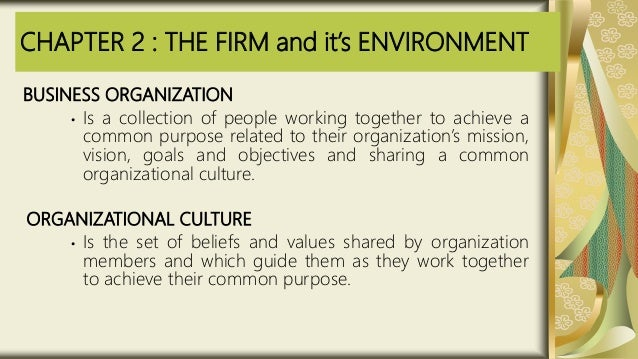 CHAPTER 2 : THE FIRM and it's ENVIRONMENT BUSINESS ORGANIZATION • Is a collection of people working together to achieve a ...