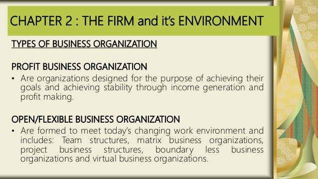 CHAPTER 2 : THE FIRM and it's ENVIRONMENT TYPES OF BUSINESS ORGANIZATION PROFIT BUSINESS ORGANIZATION • Are organizations ...