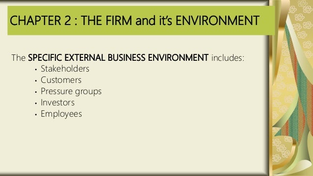 CHAPTER 2 : THE FIRM and it's ENVIRONMENT The SPECIFIC EXTERNAL BUSINESS ENVIRONMENT includes: • Stakeholders • Customers ...