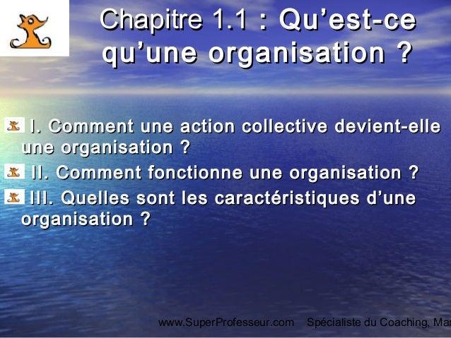 Qu 39 est ce qu 39 une organisation cours de management des for Qu est ce qu une vmc