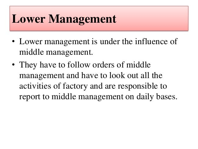 Century Paper & Board Mills Limited - Management Structure
