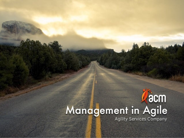 Management in Agile Agility Services Company