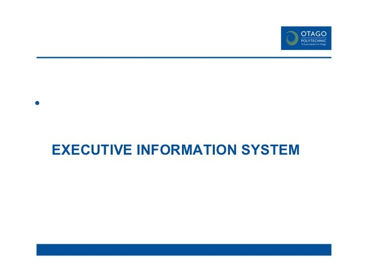 which company use management information system